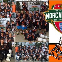 NorCal Comp Box Lacrosse League Crowns Winner